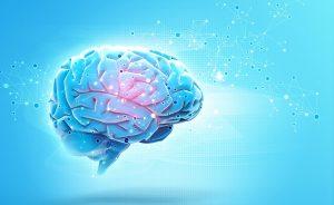 המוח המשתוקק ליותר